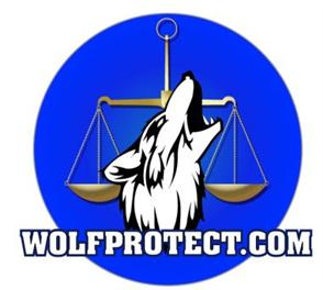 wolfprotect bankruptcy law New York and New Jersey